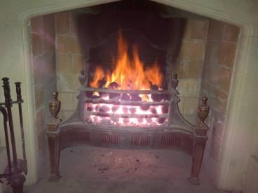 Extreme Heat fireplace